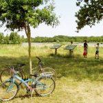 Les bords de Loire a Maimbray BEAULIEU